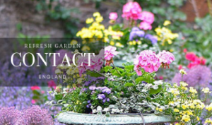 REFRESH-GARDEN-CONTACT-FLOWER