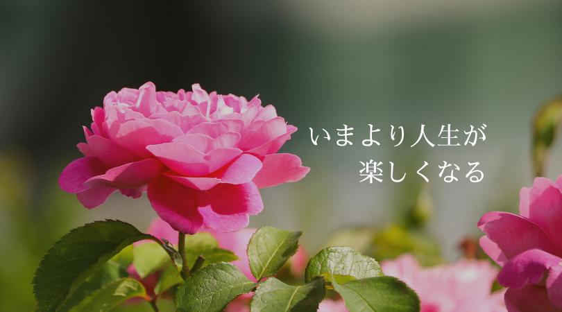 いまより人生が楽しくなる refresh garden